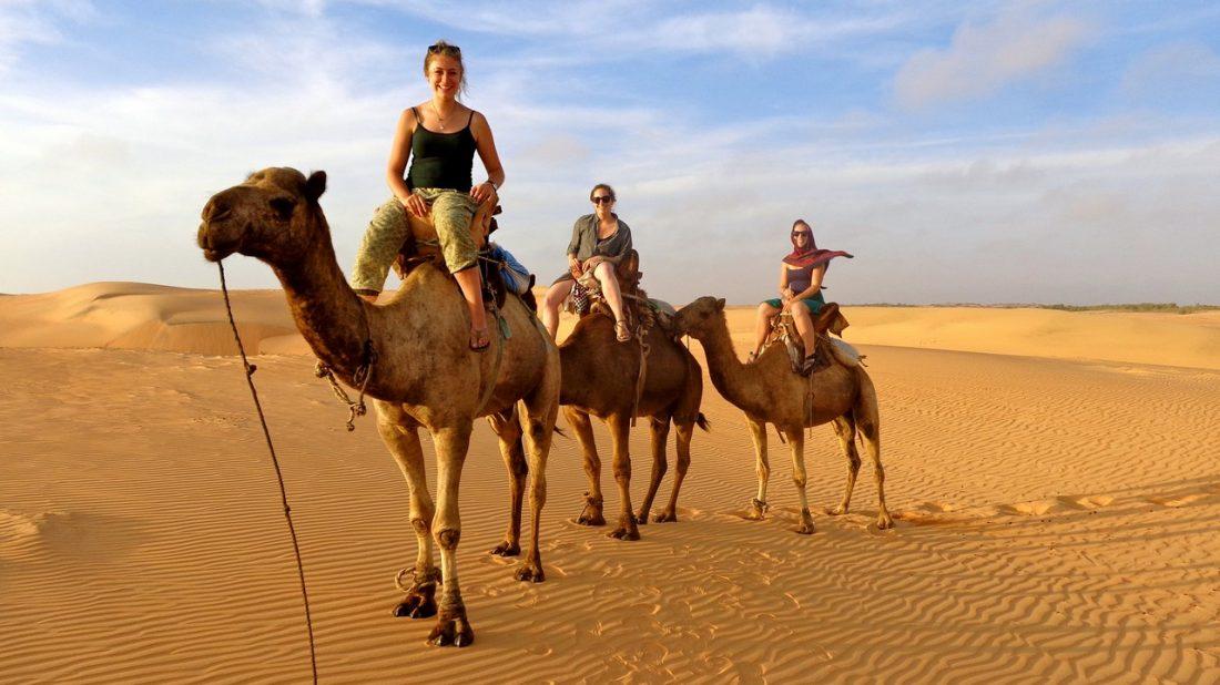 Balade en dromadaires au désert de Lompoul
